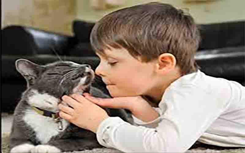 Benefits of having a cat for children