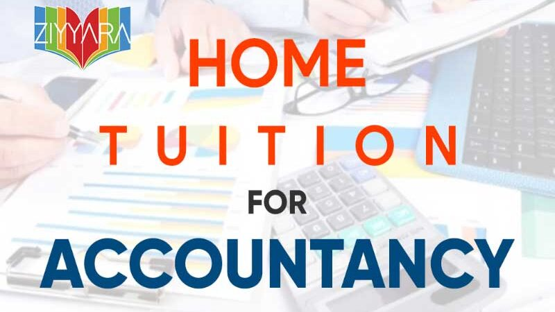 Difference between Private Accountancy tutor and Accountancy Government Teacher?